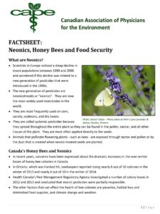 CAPE Factsheet - Neonics, Honey Bees, and Food Security