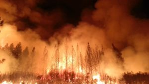 The Rim Fire in the Stanislaus National Forest near in California