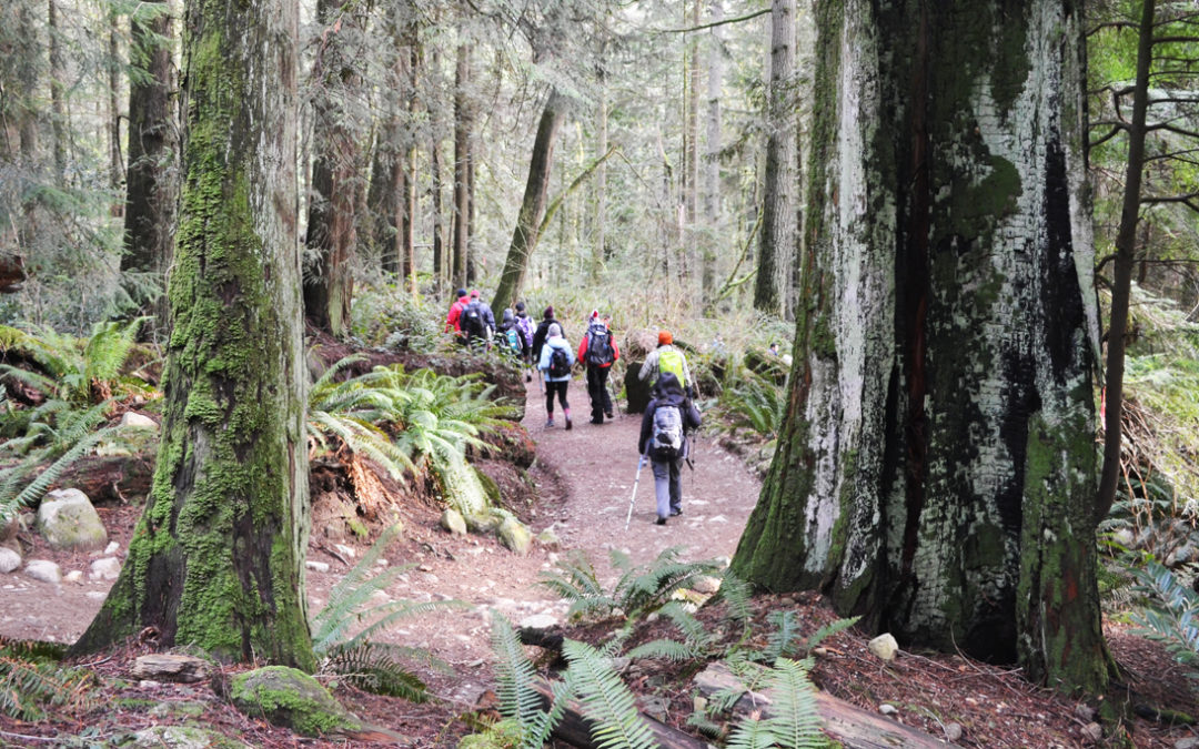 First Day Hikes – CAPE helps bring fun & healthy tradition to Canada